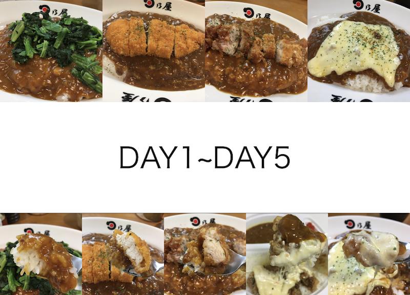 だいたい50日間のカレーチャレンジ!(DAY1~DAY5)